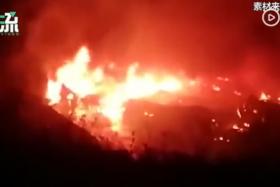 大连金州化工厂爆炸?大连消防:系仓库着火 无伤亡