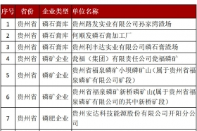 """长江""""三磷""""排查:磷石膏库环境问题突出 276家需整改企业清单公布"""